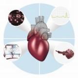 Новинка в исследовании сердечно-сосудистых заболеваний