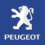 Peugeot попытается завоевать бизнес-класс гибридным хетчбэком