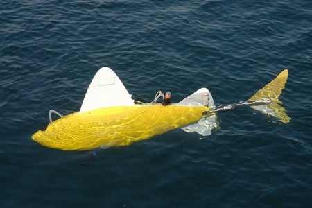 Рыба-робот для слежения за чистотой воды (1)