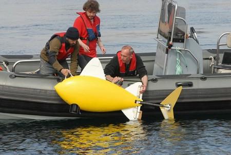 Рыба-робот для слежения за чистотой воды (2)