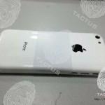 Фото возможной задней крышки бюджетного iPhone