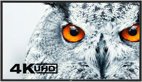 DisplayViewFrontBlack-Owl-highres