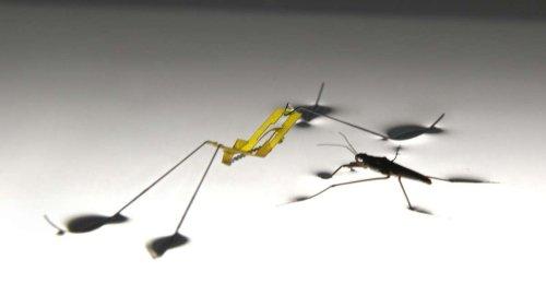 Ученые создали крошечных роботов которые не тонут