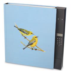 Аудио книга орнитологии